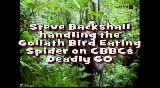 Deadly 60 - Goliath Bird Eating Spider