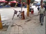 Best Dog Ever.  Dog Guards Owner's Bike!  Amazing Dog -ORIGINAL-