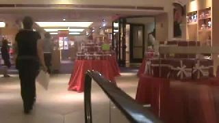 The American girl Place