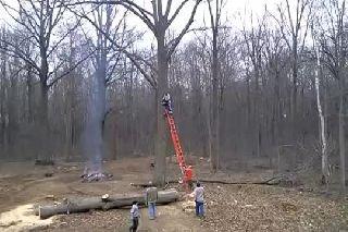 A Battlecammer At Work!