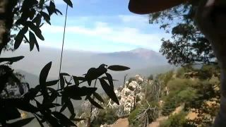 MissGracie - Swings From The Tree and Shows The View From Her Home
