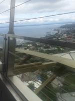 Waiting on top the high rise for lunch in Seattle, Wa.!