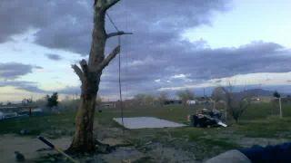 HuShStiffs Chops Down A Tree LIVE on Battlecam.com